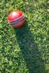 Cricket analytics with cricketr by Tinniam V Ganesh
