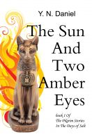 Y.N. Daniel - The Sun And Two Amber Eyes
