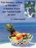 Cover for 'Diving Into Jamaica: A Jamaica Vacation and Tourism Guide for 2011'