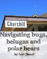 Cover for 'Churchill: Navigating bugs, belugas and polar bears'