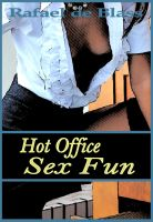 Cover for 'Hot Office Sex Fun'