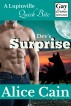 Dev's Surprise [Gay Erotic romance] by Alice Cain