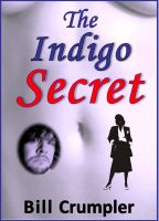 Cover for 'The Indigo Secret'