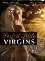 Cover for 'Perfect Little Virgins (Extreme Fairy Tales)'