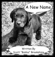 Cover for 'A New Name'