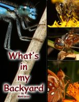 Cover for 'What's in My Backyard?'