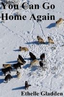 Cover for 'You Can Go Home Again'